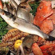 Pesce al mercato ittico